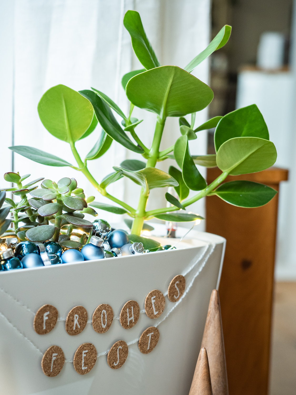 Grüne DIY Geschenkidee