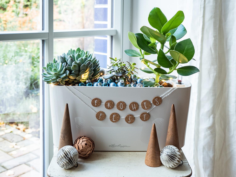 Grüne Weihnachten: Eine nachhaltige DIY-Geschenkidee