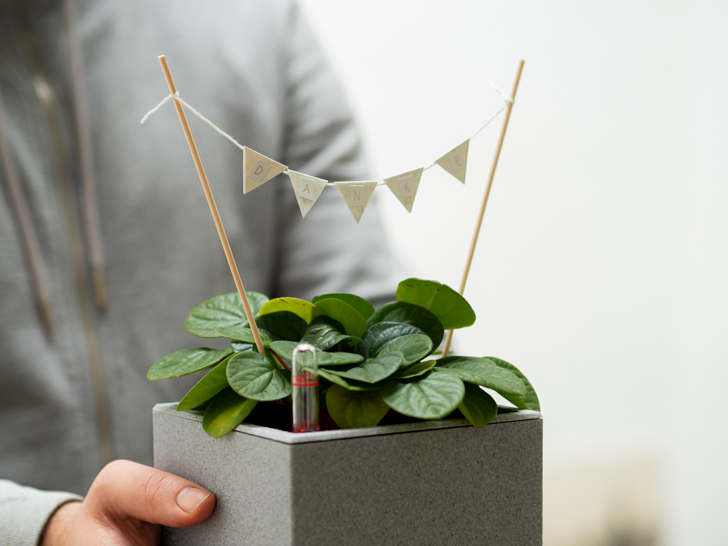 DIY Planttopper
